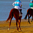 Horse race on Sanlucar of Barrameda, Spain, August  2011 — Foto de Stock