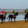 Horse race on Sanlucar of Barrameda, Spain, August  2011 - Stock Photo