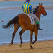 Horse race on Sanlucar of Barrameda, Spain, August  2011 — 图库照片