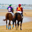 Horse race on Sanlucar of Barrameda, Spain, August  2011 - 