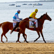 Horse race on Sanlucar of Barrameda, Spain, August  2011 - 图库照片