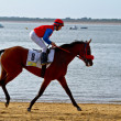 Horse race on Sanlucar of Barrameda, Spain, August  2011 — Stock fotografie