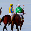 Horse race on Sanlucar of Barrameda, Spain, August  2011 — Photo