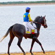 Horse race on Sanlucar of Barrameda, Spain, August  2011 — Stockfoto