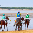 Horse race on Sanlucar of Barrameda, Spain, August  2011 - Stockfoto