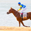 Horse race on Sanlucar of Barrameda, Spain, August  2008 — Stockfoto