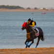 Horse race on Sanlucar of Barrameda, Spain, August  2008 — Stock Photo