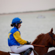 Horse race on Sanlucar of Barrameda, Spain, August  2010 - Stock fotografie
