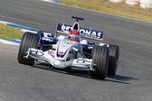 Del team bmw sauber f1, robert kubica, 2006 — Foto Stock