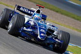 Equipo williams f1, alex wurz, 2006 — Foto de Stock