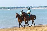 Wyścigów konnych w sanlucar barrameda, hiszpania, sierpień 2011 — Zdjęcie stockowe