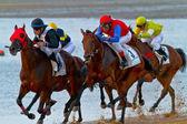 Horse race op sanlucar de barrameda, spanje, augustus 2011 — Stockfoto