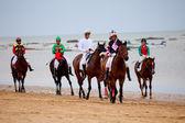 Horse race on Sanlucar of Barrameda, Spain, August 2010 — Stock Photo