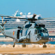Stock Photo: Helicopter Seaking