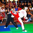 3rd world kickboxing championship 2011 - ストック写真