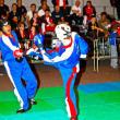 3rd world kickboxing championship 2011 - Foto de Stock
