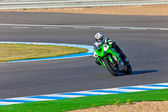 Adria Araujo pilot of Kawasaki Ninja Cup — Stock Photo