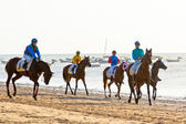 Horse race on Sanlucar of Barrameda, Spain, August 2011 — Stock Photo