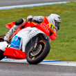 CEV Championship, November 2011 - Stock Photo