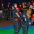 3rd world kickboxing championship 2011 — Stock fotografie