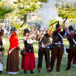Historical military reenacting — Stockfoto #8707590