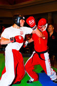 3rd world kickboxing championship 2011 — Foto Stock