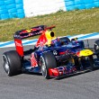 Team Red Bull F1, Mark Webber, 2012 - Stock Photo