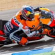 Stock Photo: Dani Pedrospilot of MotoGP