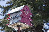 Large Bird House — Photo