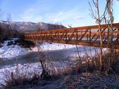 Zwiedzanie mostu w zimie — Zdjęcie stockowe