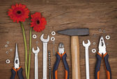 Set of different tools with flowers — Stockfoto