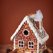 Homemade gingerbread house — Stock Photo #7969427