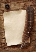 Old parchment and quill pen — Stock Photo