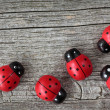 Ladybugs — Stock Photo #8292197