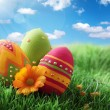 colorful easter eggs — Stock Photo #8292226