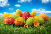 Colorful easter eggs — Stock fotografie