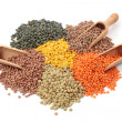 Group of lentils — Stock Photo #8869506