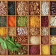 Legume - Stock Photo