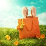 Velikonoční přítomen — Stock fotografie #9511986