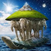 Världen sköldpadda — Stockfoto