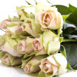 Stock Photo: Lovely roses