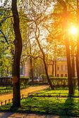 Parque de la ciudad — Foto de Stock
