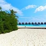Beach of Maldives — Stock Photo