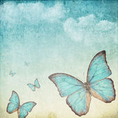 Vintage background with a blue butterfly — Stock Photo