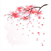 Stylized Japanese cherry tree blossom — Stock Vector