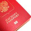 Passport isolated — Stock Photo