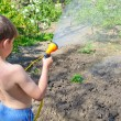 Boy watering plants in the garden with a hose — Stock Photo