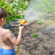 Boy watering plants in the garden with a hose — Stock Photo #10359701