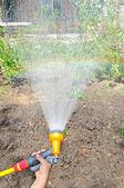 ホースで庭に水をまく — ストック写真