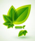 Antecedentes de la naturaleza — Vector de stock